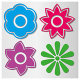 Flowers set, vector illustration.