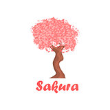 Sakura Cartoon Style Icon