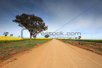 Country road through rural farmland