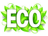 Eco Word and Leaves