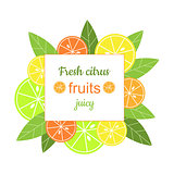 Vector square frame with citrus.
