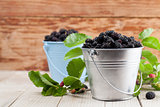 Mulberries in small buckets