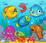 Coral fauna theme image 6