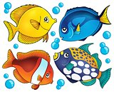 Coral reef fish theme collection 2
