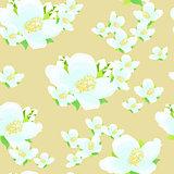 jasmine flower. seamless vector illustration