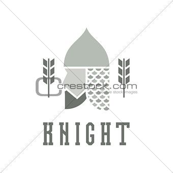Knight head, helmet with chain mail armor, vector illustration face