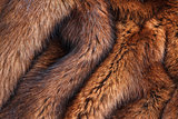 natural fur closeup