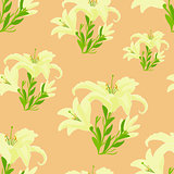 Lily on a pink . seamless pattern vector illustration
