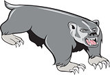 Badger Pouncing Cartoon