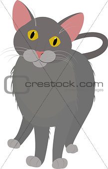 grey cartoon domestic cat, with yellow eyes isolated on white
