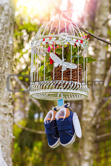 blue baby shoes hanging from a cage and branch