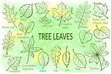 Leaves of Plants Pictogram Set