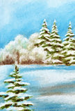 Winter Christmas Forest Landscape