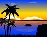 Evening in tropic