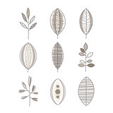 Different Shape Leaf Set