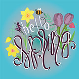 Spring pattern with text Hello Spring