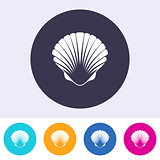 Vector scallop seashell icon