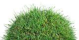 Grassy Tumulus Hill