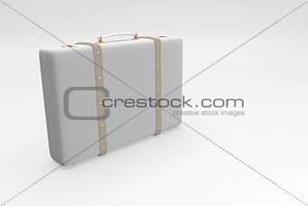 gray elegant suitcase
