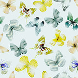 butterfly watercolor seamless