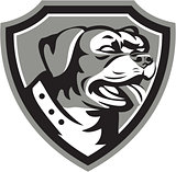 Rottweiler Guard Dog Shield Black and White