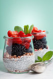 Chia seeds vanilla pudding and berries