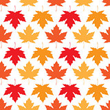 Vector seamless wallpaper. Autumn maple leaves