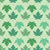 Vector seamless wallpaper. Maple leaves