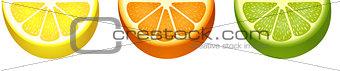 Sliced fresh citrus fruit