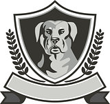 Rottweiler Head Laurel Leaves Crest Black and White