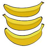 Vector illustration of the banana