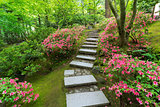 Azaleas in Bloom along Japanese Stone Stairs