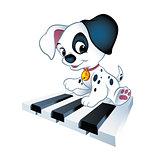 Piano puppy