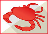 Crab  isometric flat vector 3d