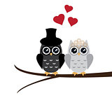 Owl Wedding