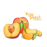ripe peach fruit