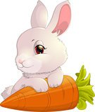 rabbit on carrot