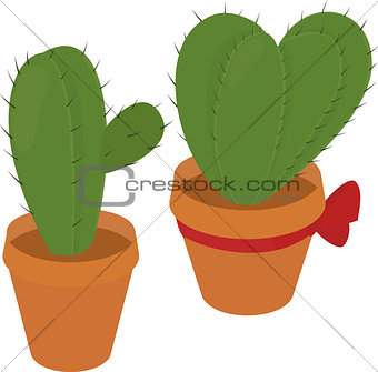 cactus in  brown pot, desert green flora, prickly plant, thorny, spiny