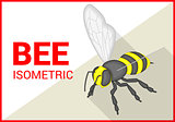Bee isometric flat vector 3d
