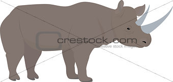 cartoon african rhino with big horns, vector