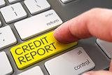 Hand Touching Credit Report Keypad.