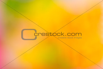 Abstract blur fresh color background