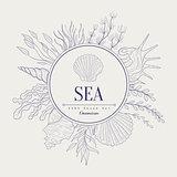 Sea Vintage Sketch