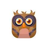 Owl Square Icon
