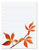 Exercise book with autumnal virginia creeper leaf