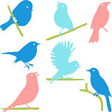 Bird Silhouettes, colored silhouettes.