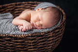 Beautiful newborn inside a basket