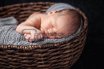 Beautiful newborn inside a basket