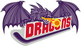 Dragon Fire Hockey Stick Retro