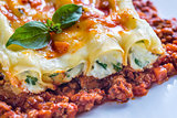 Canelloni stuffed with ricotta with bolognese sauce
